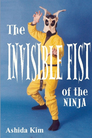 INVISIBLE FIST of the NINJA